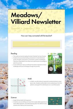 Meadows/ Villiard Newsletter