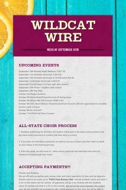 Wildcat Wire