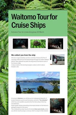 Waitomo Tour for Cruise Ships