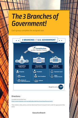 The 3 Branches of Government!