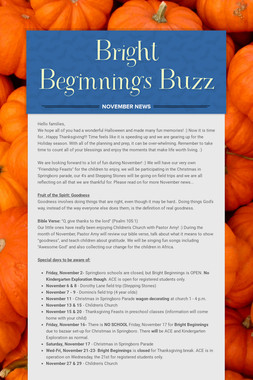 Bright Beginnings Buzz