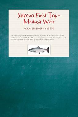 Salmon Field Trip- Medusa Weir