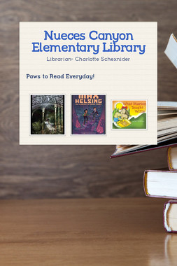 Nueces Canyon Elementary Library