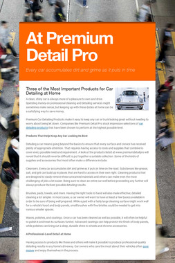 At Premium Detail Pro