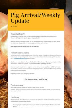 Pig Arrival/Weekly Update