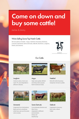 Come on down and buy some cattle!