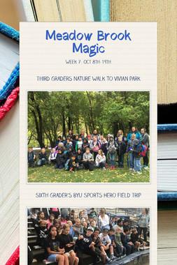 Meadow Brook Magic