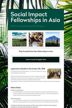Social Impact Fellowships in Asia