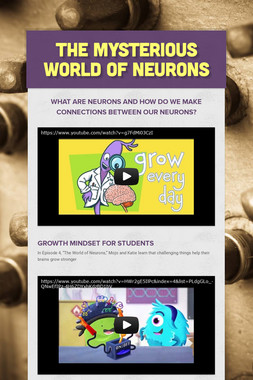The Mysterious World of Neurons