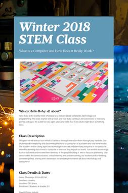 Winter 2018 STEM Class