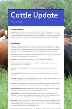Cattle Update