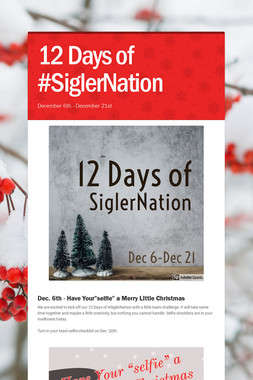 12 Days of #SiglerNation