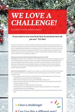 WE LOVE A CHALLENGE!