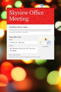Skyview Office Meeting