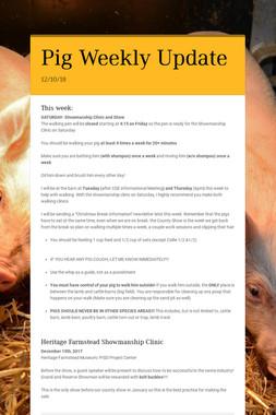 Pig Weekly Update