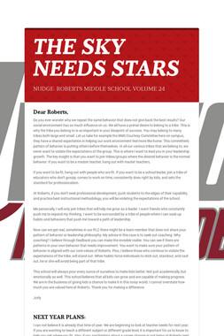 THE SKY NEEDS STARS