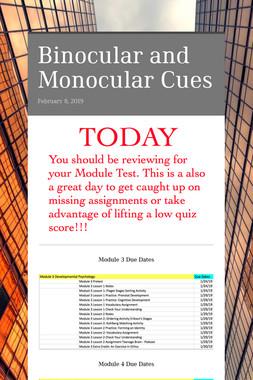 Binocular and Monocular Cues