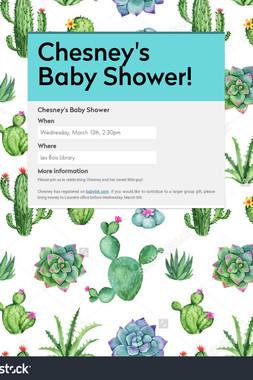 Chesney's Baby Shower!