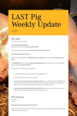 LAST Pig Weekly Update