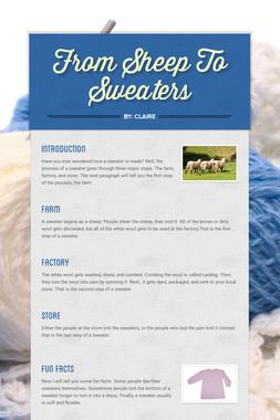 From Sheep To Sweaters