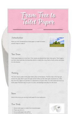 From Tree to Toilet Paper