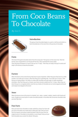 From Coco Beans To Chocolate