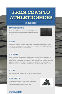 From Cows to Athletic Shoes