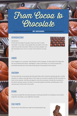 From Cocoa to Chocolate