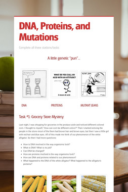DNA, Proteins, and Mutations