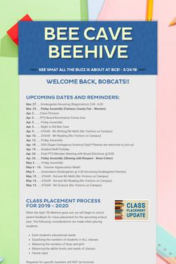 Bee Cave Beehive