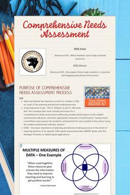 Comprehensive Needs Assessment