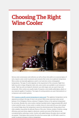 Choosing The Right Wine Cooler