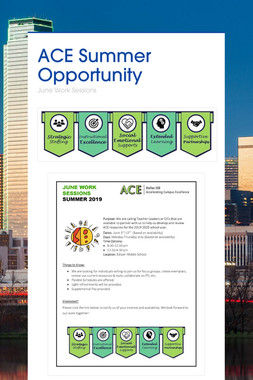 ACE Summer Opportunity