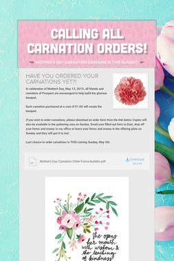 CALLING ALL CARNATION ORDERS!