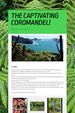 THE CAPTIVATING COROMANDEL!