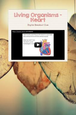 Living Organisms - Heart