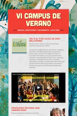 VI CAMPUS DE VERANO