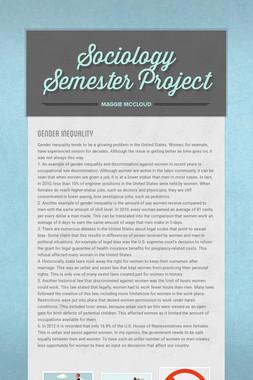 Sociology Semester Project