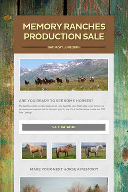 Memory Ranches Production Sale