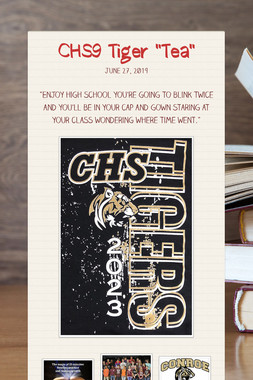 "CHS9 Tiger ""Tea"""