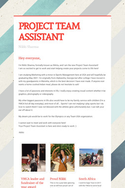 PROJECT TEAM ASSISTANT