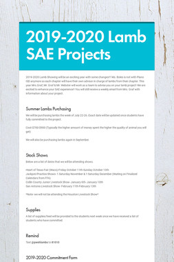 2019-2020 Lamb SAE Projects