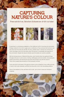 CAPTURING NATURE'S COLOUR