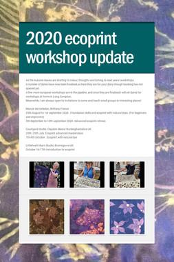 2020 ecoprint workshop update