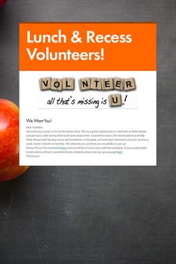 Lunch & Recess Volunteers!