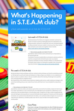 What's Happening in S.T.E.A.M club?