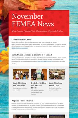 November FEMEA News