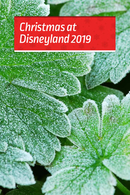 Christmas at Disneyland 2019