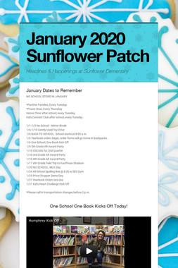 January 2020 Sunflower Patch
