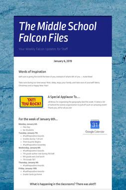 The Middle School Falcon Files